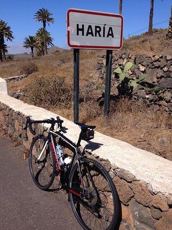 Revolution Bikes : photo0.jpg