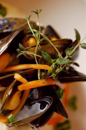 Fusa Municipality, Norvegia: Fresh mussels