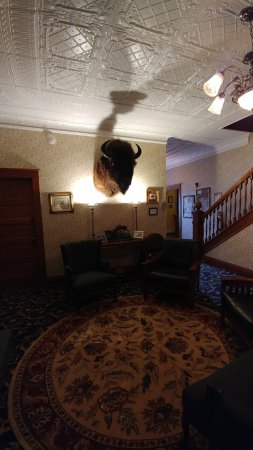 The Historic Elk Mountain Hotel: Just look at that ceiling!