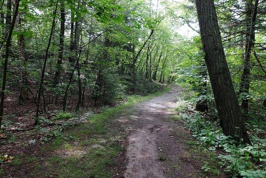 Malden, MA: Middlesex Fells Reservation