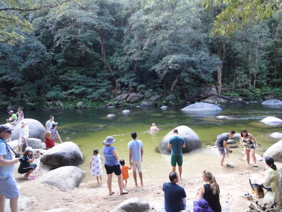 Daintree Region, Australia: rivière