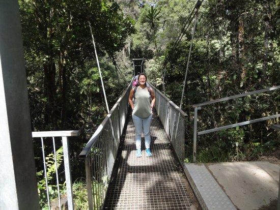 Daintree Region, Australia: pont
