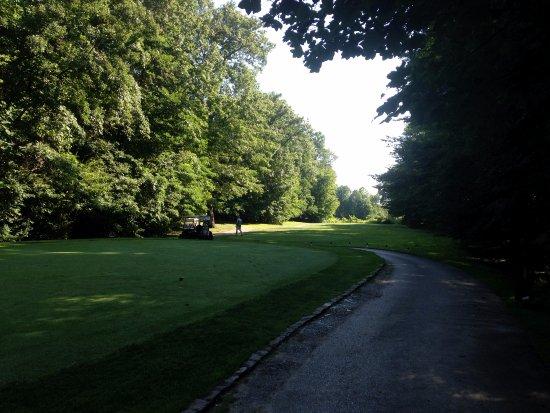 Whittaker Woods Golf Club : maybe a few narrow fairways off the tees