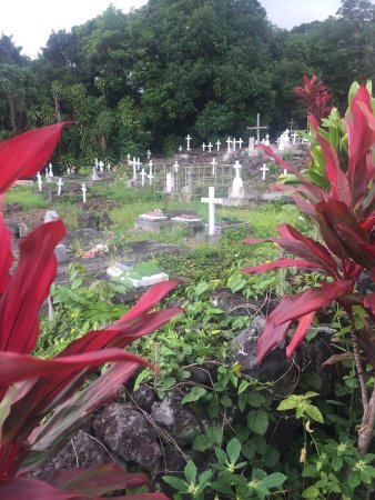 Honaunau, Hawái: photo3.jpg