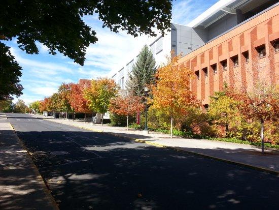 Washington State University: Fall