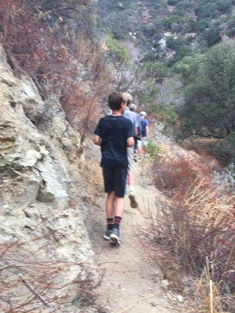 Big Santa Anita Canyon : Great Walking Paths