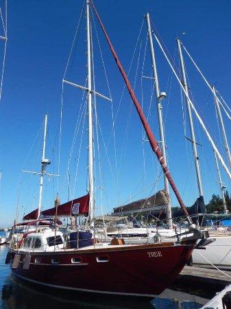 Νησί Bainbridge, Ουάσιγκτον: FB_IMG_1502556209224_large.jpg