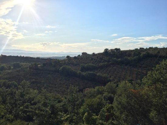 Canalicchio, Italy: photo4.jpg