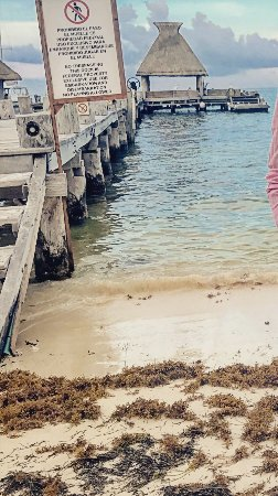 Zoetry Paraiso de La Bonita: well there's the beach for you