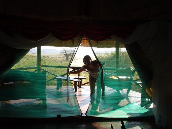 Manyara Wildlife Safari Camp: photo0.jpg