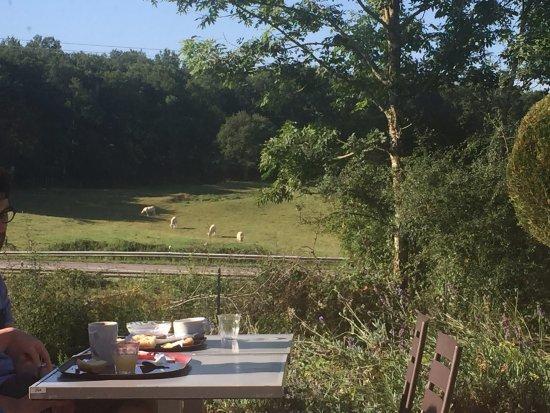 Sauvigny-le-Bois, Francia: Petit-déjeuner sur la terrasse
