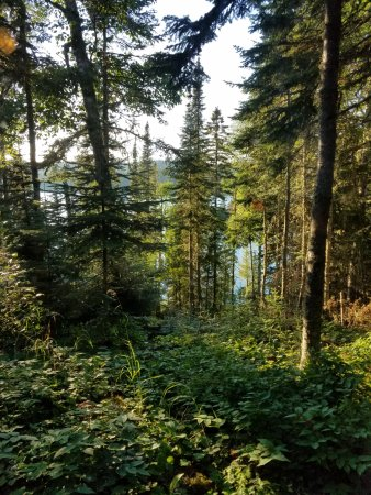 Isle Royale National Park, MI: View from Cabin #208