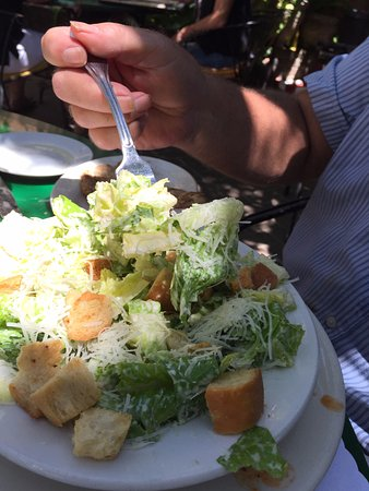 Occidental, Califórnia: Delicious Caesar salad