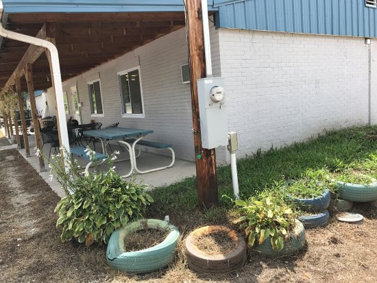 Fredericktown, MO: The Hungry Gardener