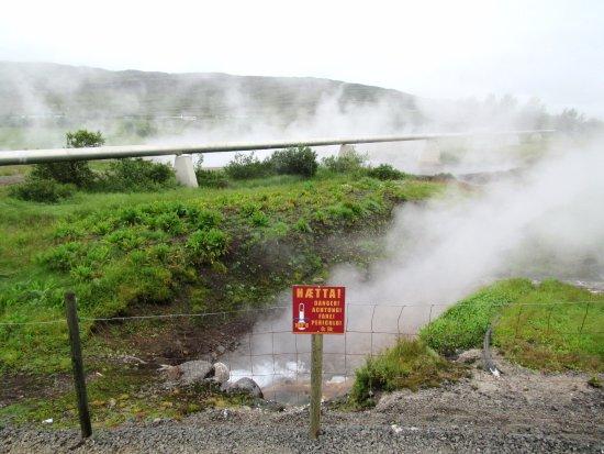 Reykholt, İzlanda: Thermal Area
