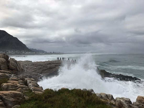 Hermanus, Zuid-Afrika: Waves crashing against rocks at Siever's Point
