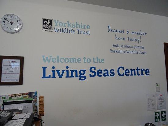 Living Seas Centre: shop/reception area