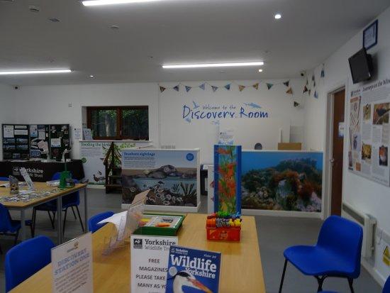 Living Seas Centre: discovery room