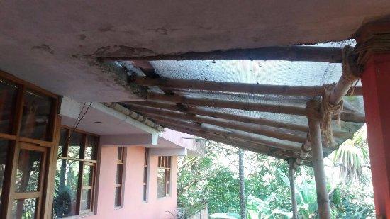 Bio Hostal Mindo Cloud Forest: El techo de la sala de estar en cualquier momento se cae encima del que este sentado