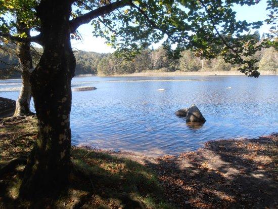 Lacrouzette, France: Le Lac du Merle