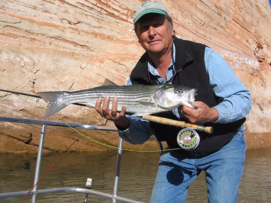 Ambassador guides page az omd men tripadvisor for Arizona fishing guides