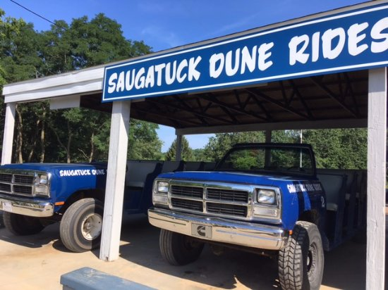 Saugatuck, MI: The dune buggies you ride in. I believe each one holds 18 people.