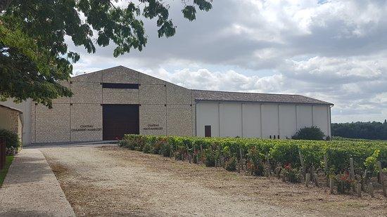 Château Haut-Marbuzet - Henri Duboscq: 20170812_115549_large.jpg