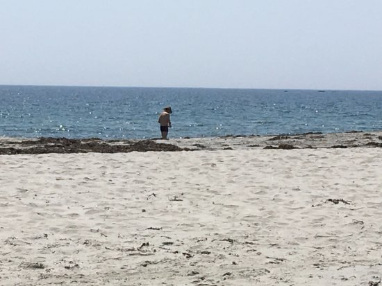 Bayswater, Canada: collecting rocks on the beach