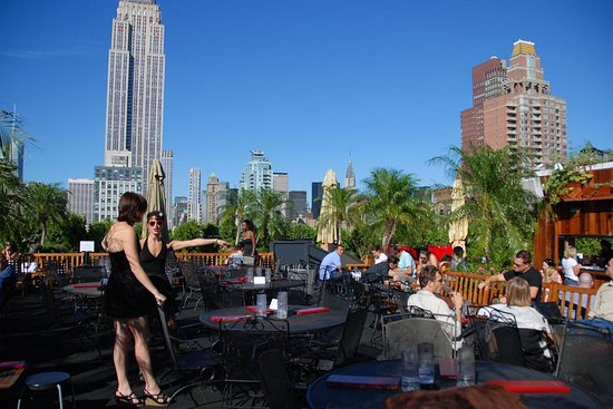 230 Fifth New York City Manhattan Menu Prices