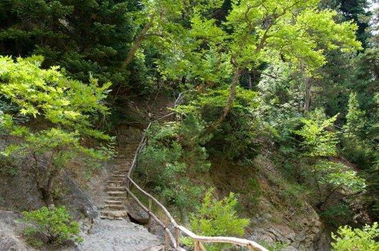 Drimona, Grèce : Weg zum Wasserfall von Drymona