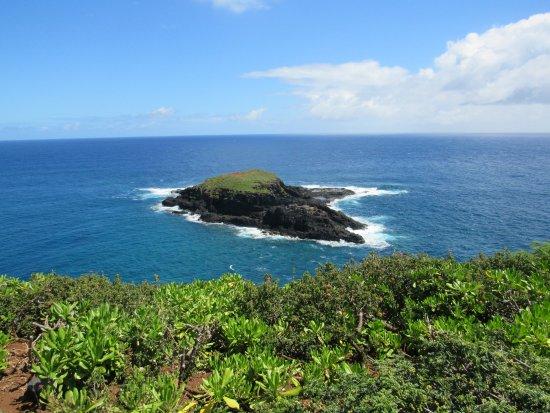 Kilauea, HI: Island