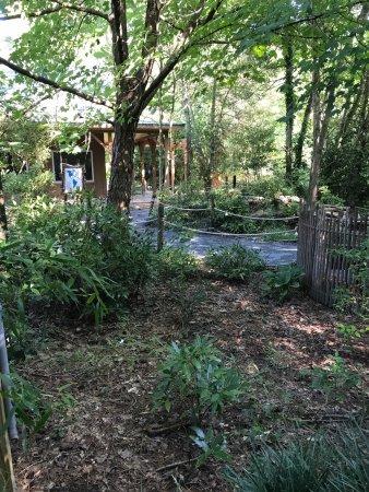 Salisbury Zoo: photo0.jpg
