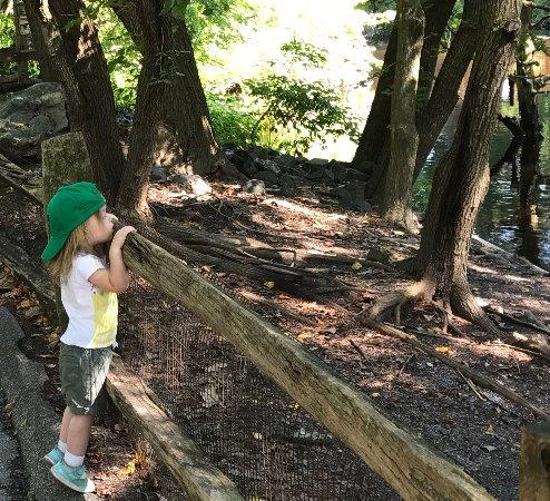 Salisbury Zoo: photo1.jpg