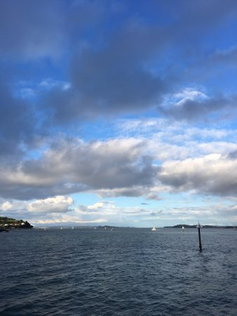 Devonport, Nova Zelândia: Looking out to the Waitemata Harbour & the sail boats
