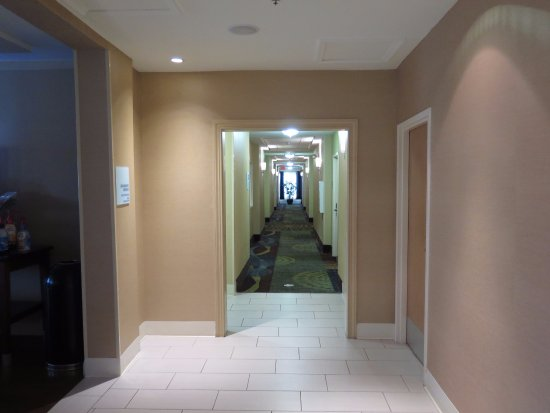 Holiday Inn Express Hotel & Suites Jacksonville South: Estos corredores lo dicen todo, parecía nuevo estrenando