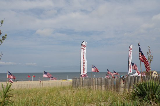 Rehoboth Beach, DE: Junior Lifeguard Competition!