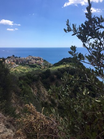 Cinque Terre Trails: The view back to Corniglia - our second favourite of the 5 towns (Monterosso being the first).