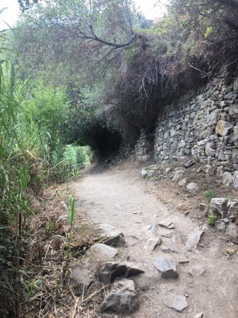 Cinque Terre Trails: Part of the track, Corniglia to Vernazza. Watch out for slippery smooth stones. Take water.