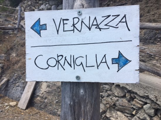Cinque Terre Trails: One track in and out. Easy.