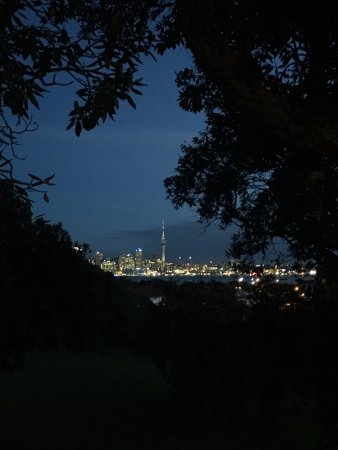 VR Takapuna: From our room