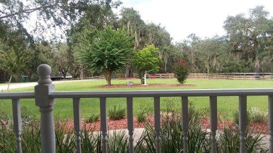 Floral City, FL: 20170811_162313_large.jpg