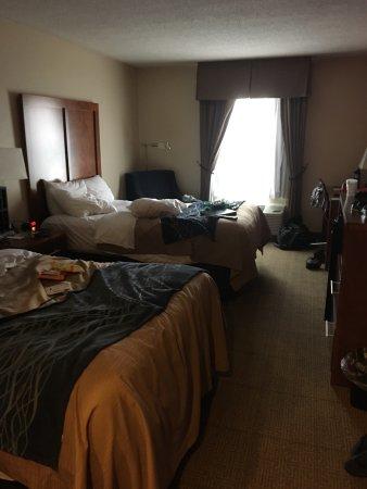 Comfort Inn Civic Center: photo1.jpg