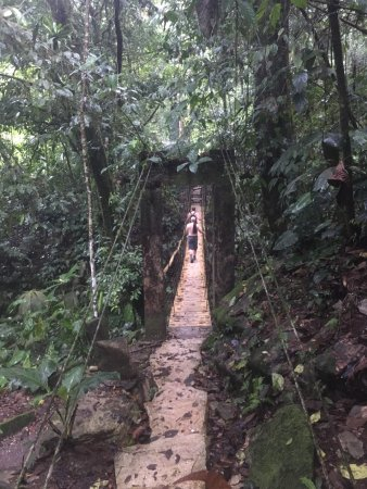 Piedras Blancas, Costa Rica : photo5.jpg