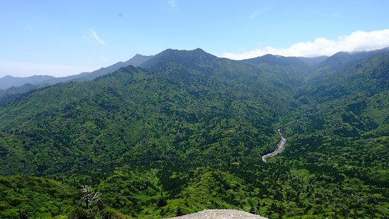 Shiratani Unsuikyo Valley (Kumage-gun Yakushima-cho, Japan): Top Tips Before ...