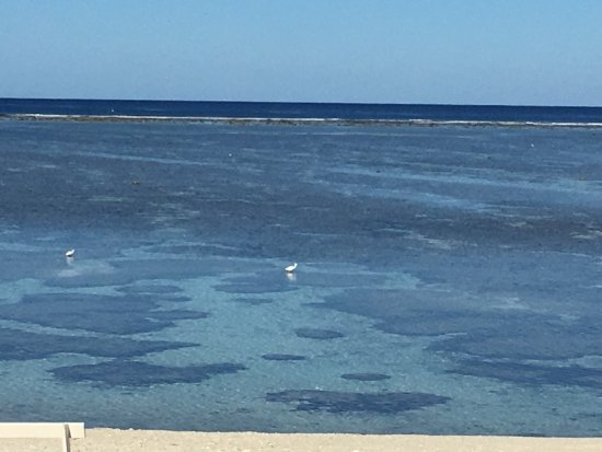 Agnes Water, Australia: photo2.jpg