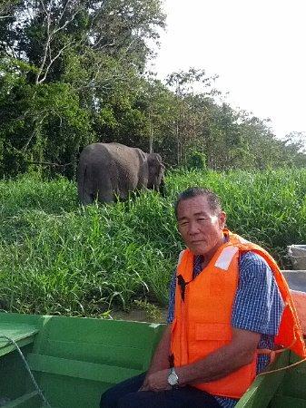 Sukau, Malaysia: Kinabatangan Jungle Camp
