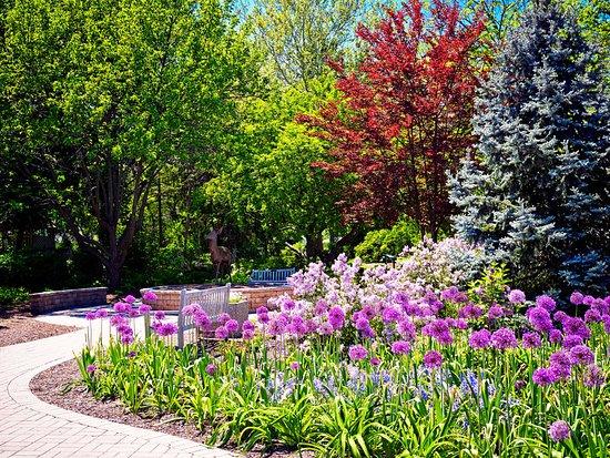 The Westin Lombard Yorktown Center: Lilacia Park