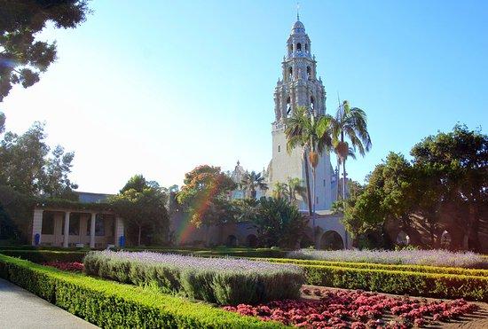 The Westin San Diego Gaslamp Quarter: Lily Pond - Balboa Park