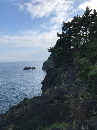 Jogasaki Coast (Ito, Japan): Top Tips Before You Go (with ...