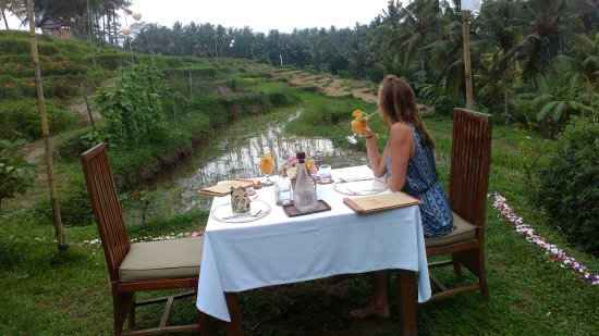 Soulshine Bali: Rice Field private dinner with excellent food!